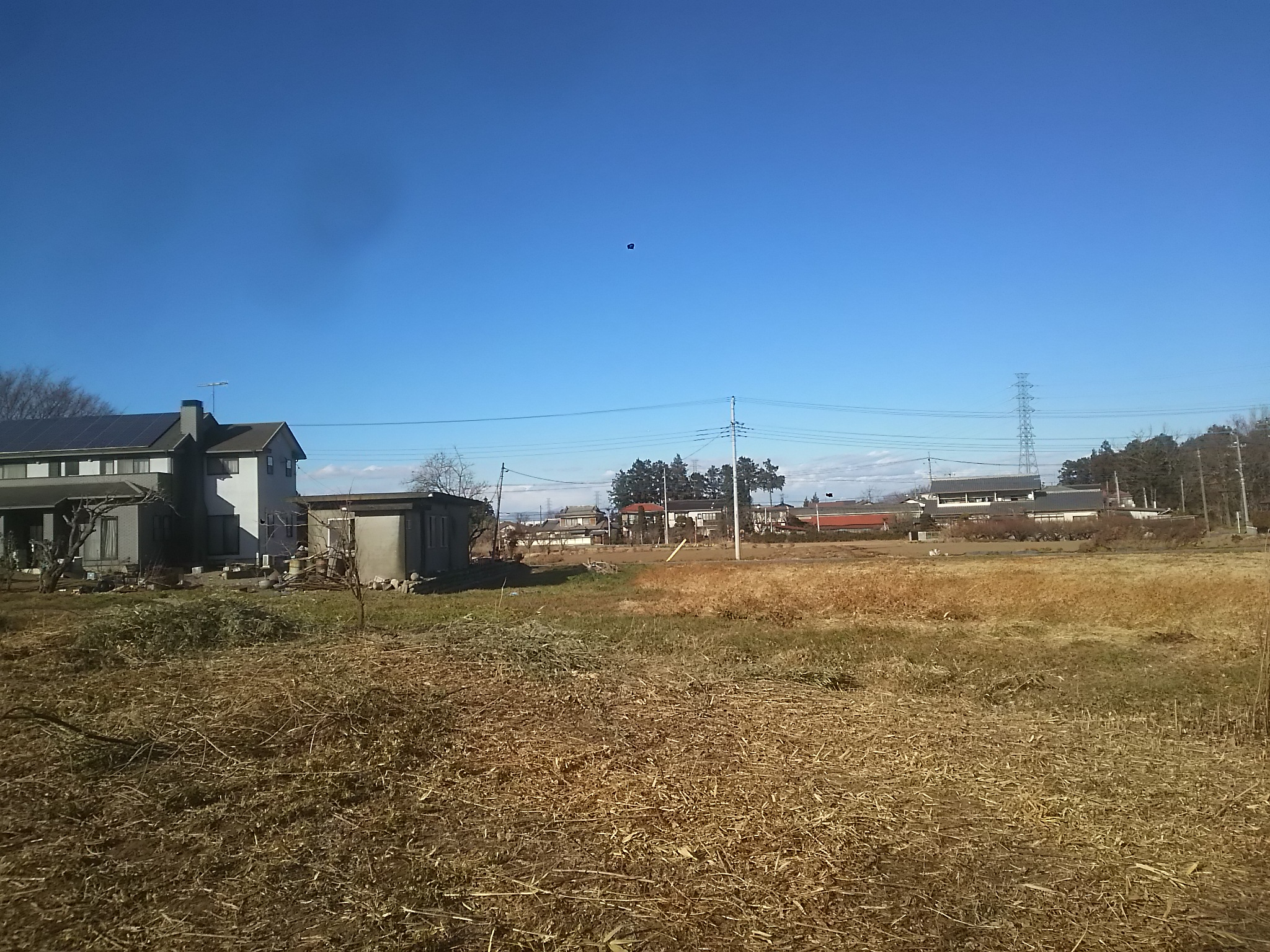荒地再生炭焼きプロジェクトで変わった風景