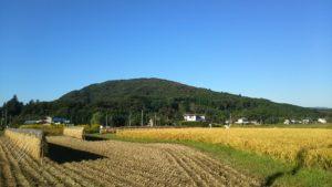 手入れされた美しい田園風景
