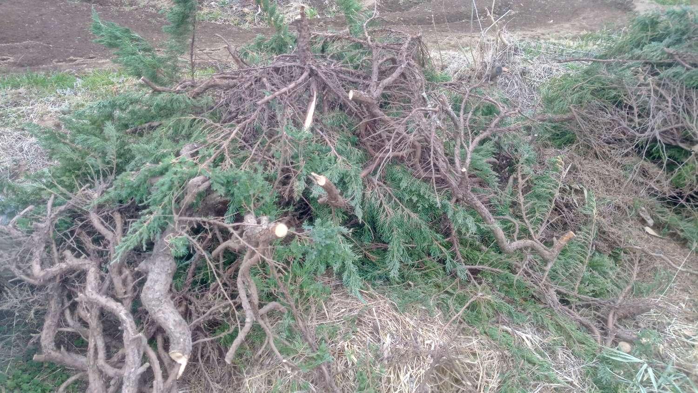 剪定枝で堆肥づくり