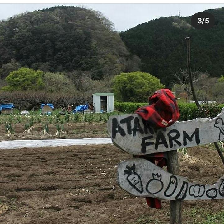 よりい週末有機農業塾
